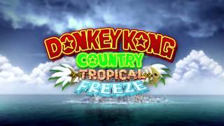 Level 3-1: Grassland Groove (Section 3) - Donkey Kong Country:…