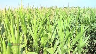 Farm Basics #772 - Center Pivot Irrigation (Air Date 1/20/13)