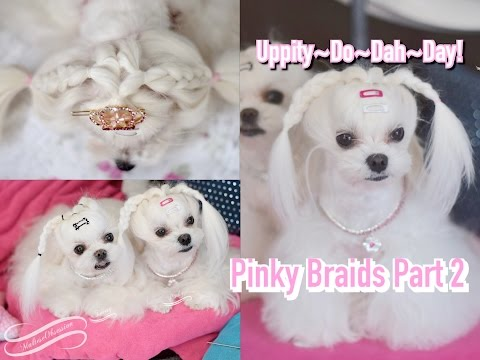 STYLING: Pinky's Piggy Braids Part2 Maltese Braided UPDO Piano Cover BTS BAngtanBoys 좋아요 I LIKE IT