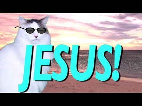 HAPPY BIRTHDAY JESUS! - EPIC CAT Happy Birthday Song