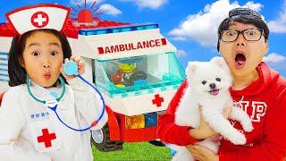 Boram Play Lego Hôpital pour animaux joue avec cute cat and dog