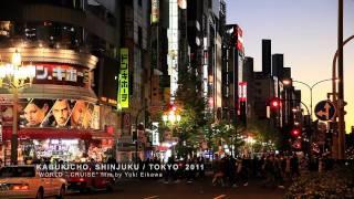 KABUKICHO, SHINJUKU / TOKYO 2011 [新宿 歌舞伎町/東京] thumbnail