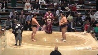 宇良 vs 天風の取組。この日は十両での取組。2016大相撲春場所6日目。