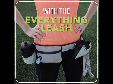 the-everything-leash-by-doggood---hands-free-dog-leash-dog-walking-belt-dog-fanny-pack