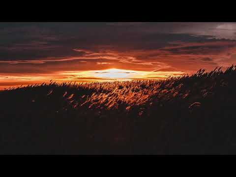P.M Project feat. Presss - FREE (De Mogul SA Misty-Eyed Remix)