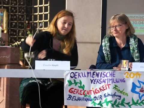 """""""Kein Blut für Rohstoffe! - Gerechter Frieden statt militärischer Gewalt"""" - Claudia Haydt (3/4)"""
