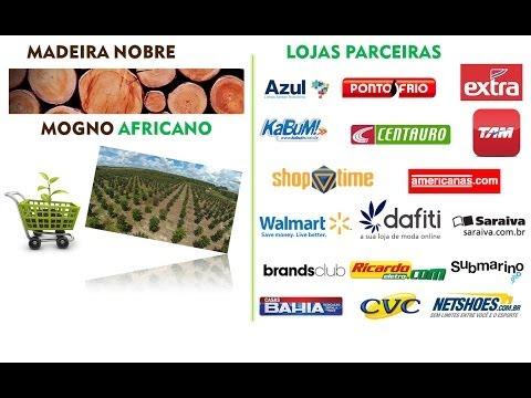 Conheça a Hardwood Green Investments