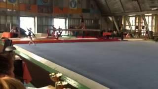 Луганск спортивная гимнастика .  Чемпионат области