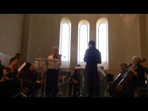 Государственный камерный оркестр Республики Абхазия. Вивальди, Времена года, Лето (часть 1)