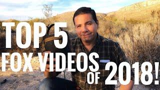 My Top 5 Junkyard Fox Videos of 2018!