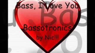 Скачать Bassotronics Bass I Love You