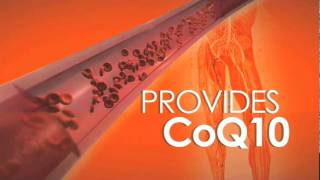 High Blood Pressure - Forever CardioHealth with CoQ10