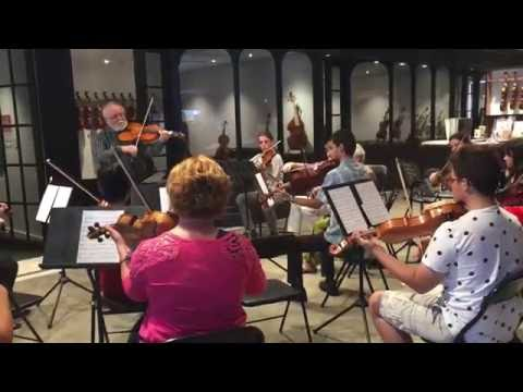 Highlights from the 2016 Cafe Viola Day