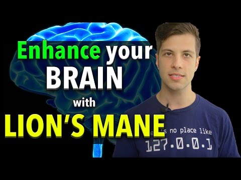LIONS MANE - Enhance Your Brain with Lion's Mane!