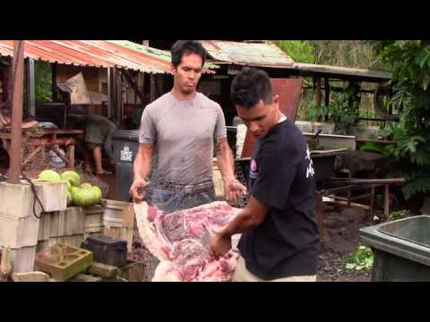 Hawaiian Imu (cooking a pig in the ground)