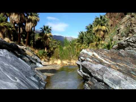 Indian Canyons: Palm Springs