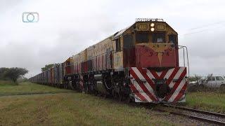 Trenazo de Belgrano Cargas y Logística volando a Alta Córdoba