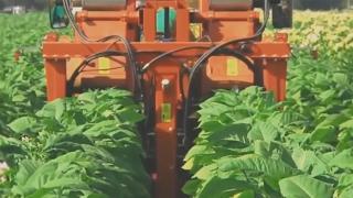 Maszyny rolnicze, kombajny w akcji, nowoczesny sprzęt żniwny, ciągniki i spychacze