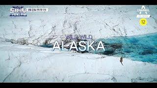 [도시어부 티저] 인간 그리고 대자연 'ALASKA' / 채널A 도시어부 51회