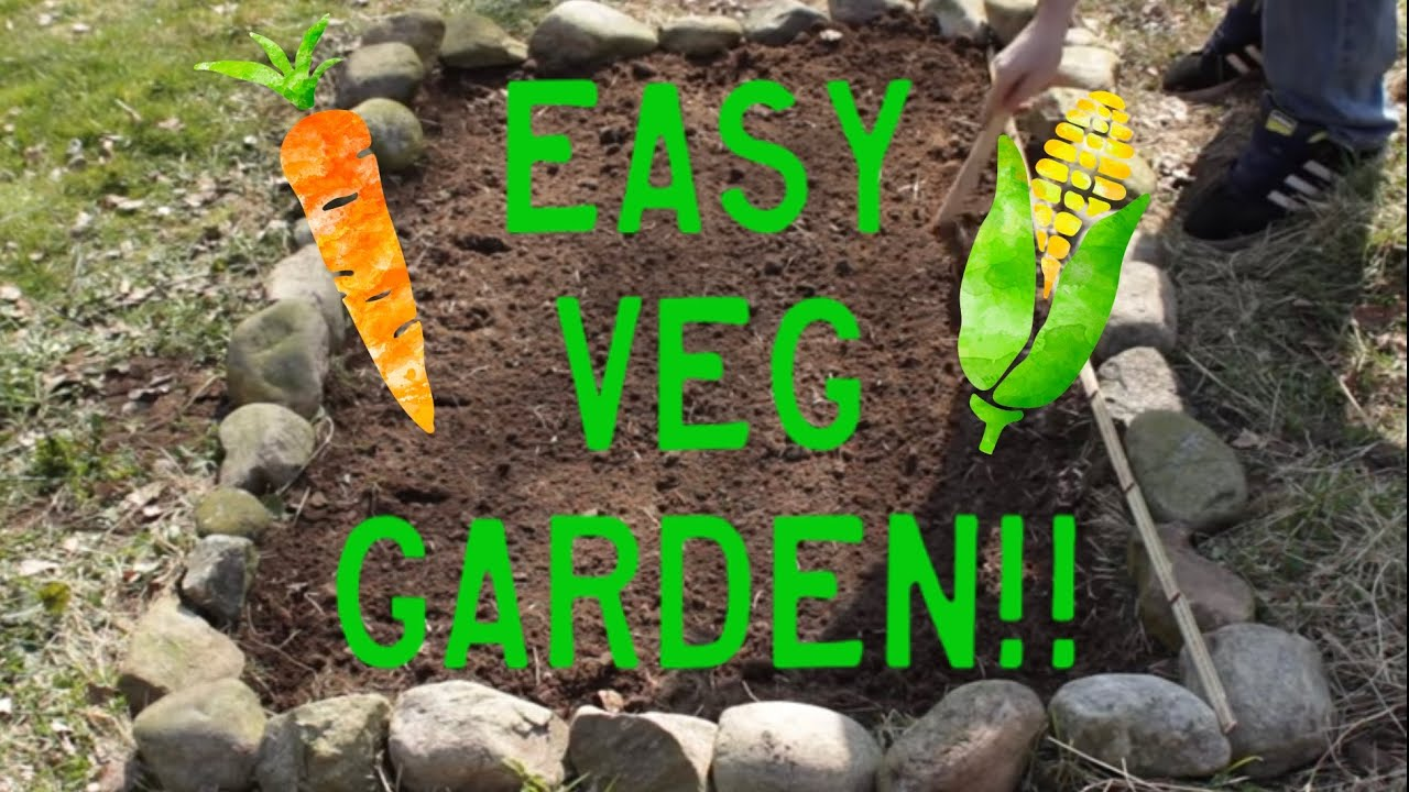 Planting Vegetables How to Plant a Small Vegetable Garden YouTube