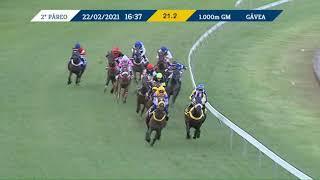 Vidéo de la course PMU PREMIO SAPHINHA