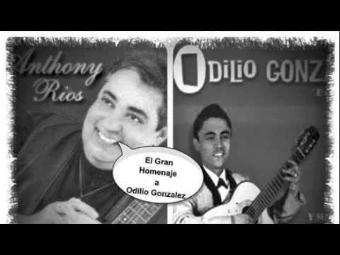 """Anthony Rios - El Gran Homenaje a Odilio Gonzalez - El """"Jivarito de Lare"""""""