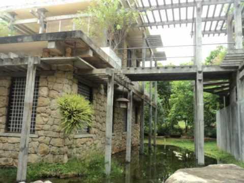 Auroville Case Study Tour
