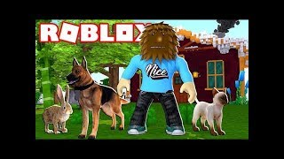 Pet Walking Simulator!   Jeromeasf Roblox