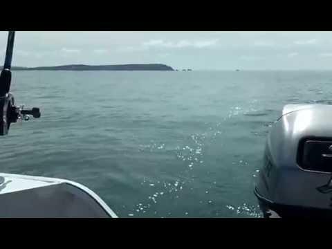 Dorset Fast Fishing Boats Fishing Trip 1st August 2015