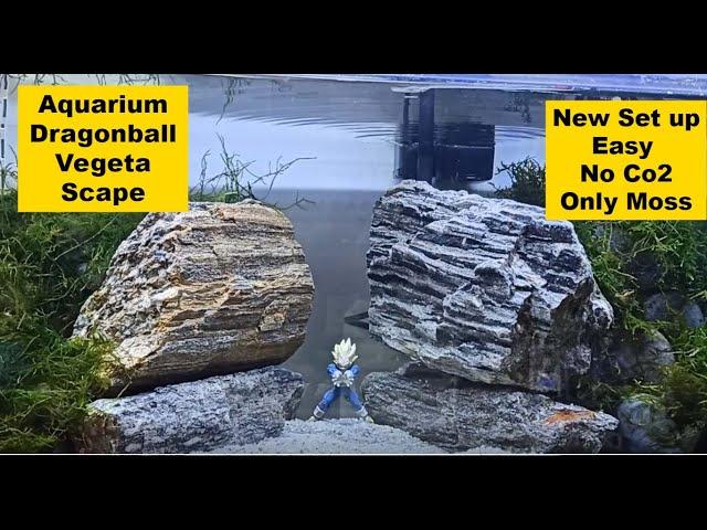 Aquarium Dragonball Vegeta Scape Remake *μεγάλες βελτιώσεις* | AquaPlanters ep 7
