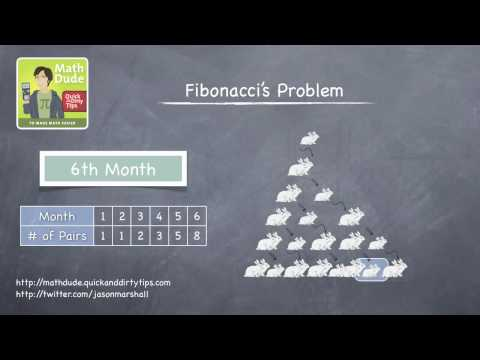 Math Dude 016 • Video Extra! • The Fibonacci Sequence...and Rabbits!