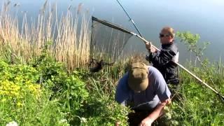 Болгария.Супер рыбалка на карпа (шарана) на платном озере(Это отличное утро ничем не выделялось среди других дней, которые так интересно проживать в Болгарии. Коман..., 2013-05-04T06:44:38.000Z)