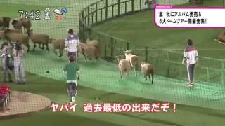 Arashi Waku Waku Gakkou 2014 -News