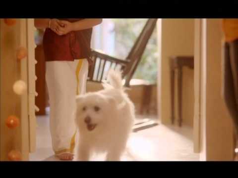 Ramraj Little Start ( Childrens) Dhoti Online from YouTube · Duration:  31 seconds