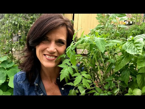 🍅 LIVE: First Day of Spring! 3 Tips to Get Your Garden Ready for Spring (REPLAY)