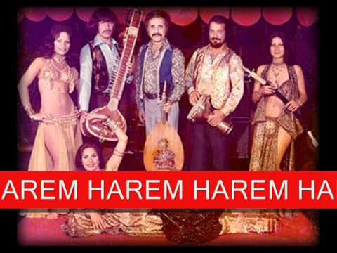 Download DRIDHE BELIN HAREM