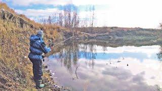 ПозднеОсенняя Микроджиг рыбалка. Закрытие сезона Ультралайт-спиннинга 2019