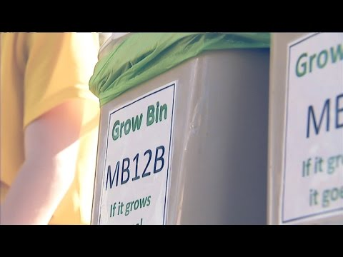 Highbury PS students show us how they reduce their waste - 3News