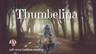 Bedtime Story for Adults for Sleep (no music version)/Relaxing Storytelling for Sleep/Female Voice