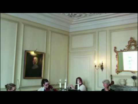Flautissimo - Mozart flute quartet