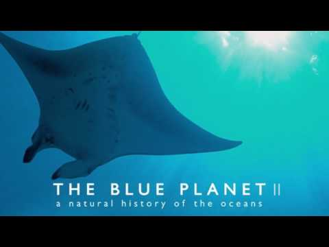 Soundtrack Blue Planet II (Theme Song - Epic Music) - Musique film Blue Planet 2