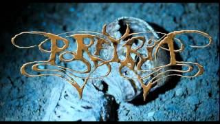 Porfyria - Duality