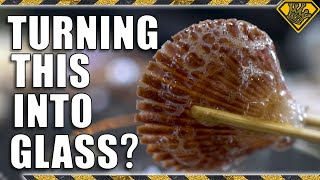 Download Turning Seashells Into Glass (Debunking Viral Videos) Mp3 and Videos