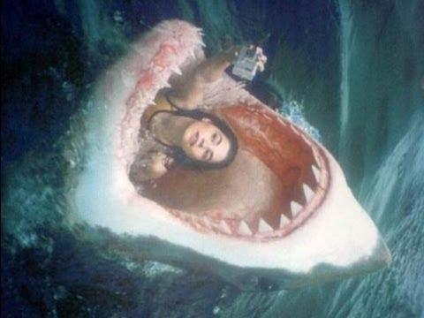 Shark Attacks Girl! (Horrific Shark Attack)