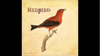 Redbird patience.wmv