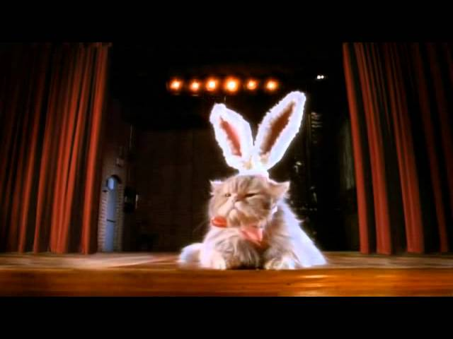 Bunny Auditions - Cadbury TV Commercial