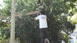 """TETECALA,CHIKIS, """"LEVANTAMIENTO DE HUERTOS"""" ,VIDEO 2 DE SEMANA SANTA 20210"""