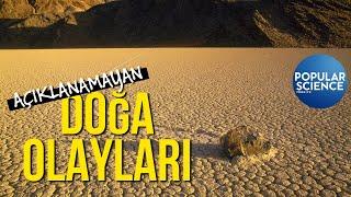 Açıklanamayan Doğa Olayları   Popular Science Türkiye