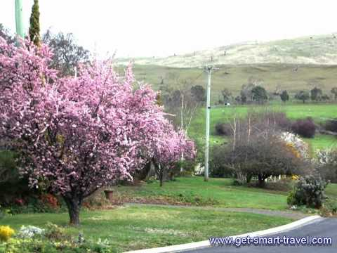 Around Tasmania in 7 Days