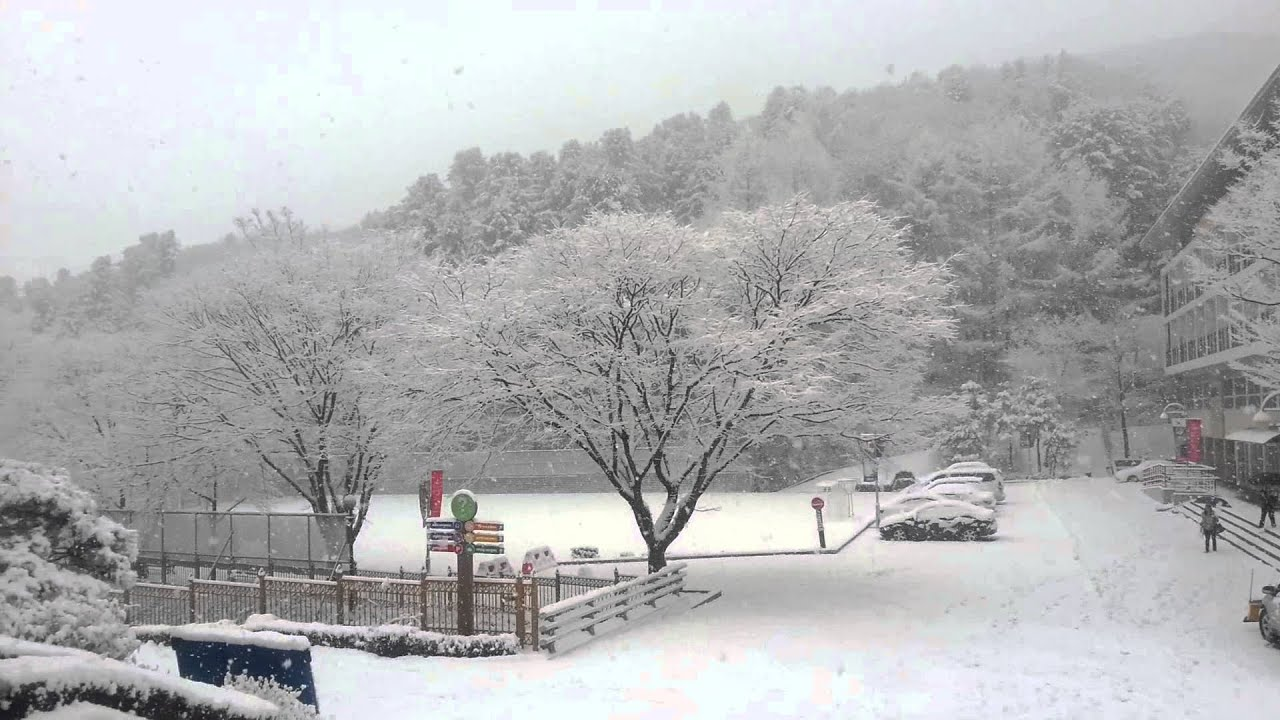Winter wonderland at SEEC Gapyeong South Korea - YouTube